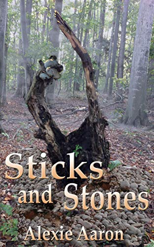 Sticks and Stones (Haunted Series Book 28) (English Edition)