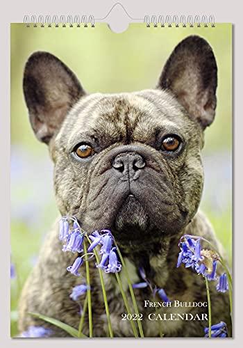 French Bulldog Wall Calendar 2022 cute Dog A4 8'x11' New Sealed
