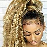 Marley Braiding Hair 1 Pack 18 Inch Marley Twist Braiding Hair Afro Kinky Marley Hair for Faux Locs Crochet Hair(27#)