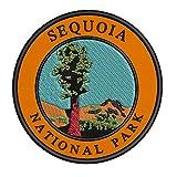 Sequoia National Park...image