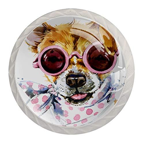 Perillas decorativas para armario o armario, para puertas y cajones, 4 unidades, diseño de perro con bufanda para gafas