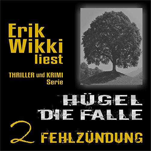 Fehlzündung audiobook cover art