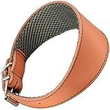 Arppe 195374535131 Collar Galgo Cuero Forro 3D Amazone, Caramelo y Verde