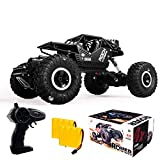 RC Car Remote Control Truck 4x4 Off Road Monster Truck for Kids, 2.4Ghz 1:16 Rock Crawler with Two Rechargeable Batteries Waterproof for All Terrain Electric Toy Car for Boys and Girls