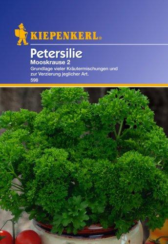 Krause Petersilie 'Mooskrause 2'
