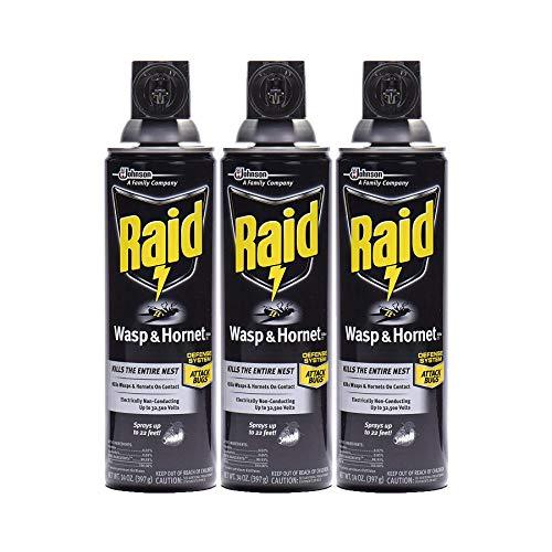 Raid Wasp and Hornet Killer, 14 oz (Pack - 3)