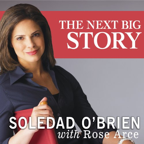 The Next Big Story audiobook cover art