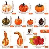 Herbst Deko Set, Kesote 120 PCS Kürbis Künstlich Ahornblatt Thanksgiving Tischdeko Erntedankfest Halloween Dekoration Tannenzapfen Eicheln - 2