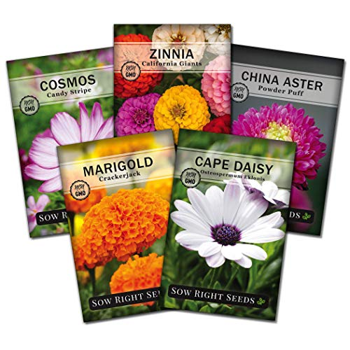 Sow Right Seeds - Flower Seed Garden Collection to Plant, 5 Packets, Marigold, Zinnia, Cosmos, Cape Daisy, and Aster; Full Instructions for Planting, Gardening Gift