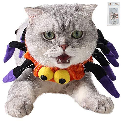Spider Halloween Pet Neck Wear