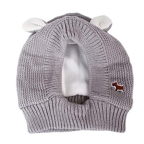 Rong Pet Dog Cat Hat - Cappellino invernale antivento con cappuccio e paraorecchie in pile