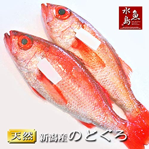 魚水島 のどぐろ 新潟・日本海産 ノドグロ 900g以上・2尾(生冷凍)