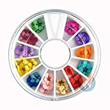 HUIJUNWENTI Mezclar los Colores de secas de la Flor for Las Decoraciones de uñas de Arte de uñas Natural Mixta Flor Seca Adornos de manicura Accesorios 32 (Color : A)