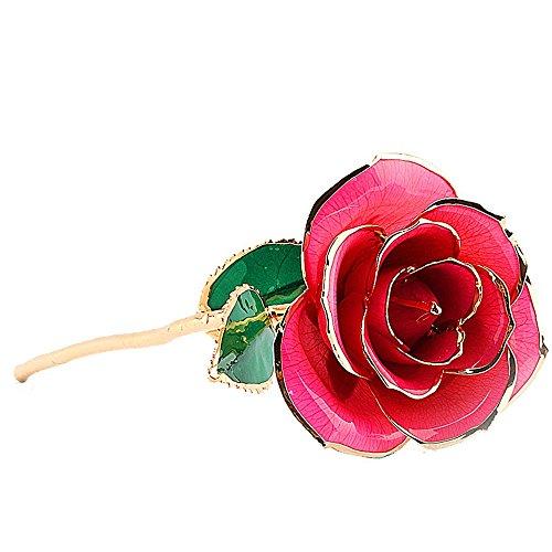 nykkola nykkola 24K Gold Folie Golden Rose Rosa Blume Last Forever Geschenk für Valentinstag Weihnachten Muttertag Geburtstag