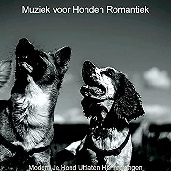 Modern Je Hond Uitlaten Herinneringen