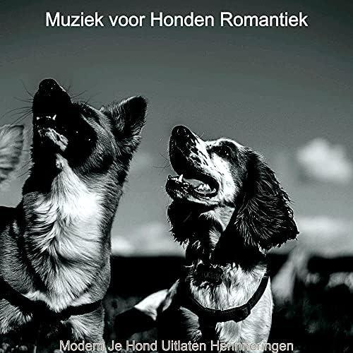 Muziek voor Honden Romantiek