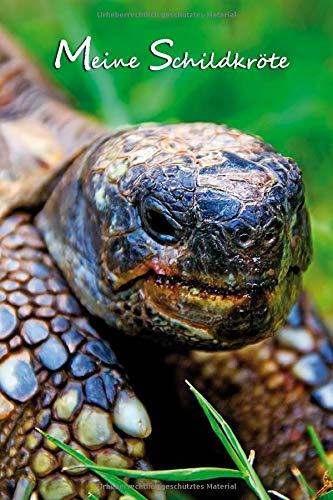 Meine Schildkröte: Griechische Landschildkröte. Notizbuch, Journal, Tagebuch, Format A5, 120 Seiten, fein hellgrau liniert. Geschenkidee für Schildkrötenfans und alle Tierfreunde