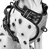 PoyPet No Pull Dog Harness, Reflective Vest Harness with 2 Leash Attachments and Easy Control Handle(Gray,M)