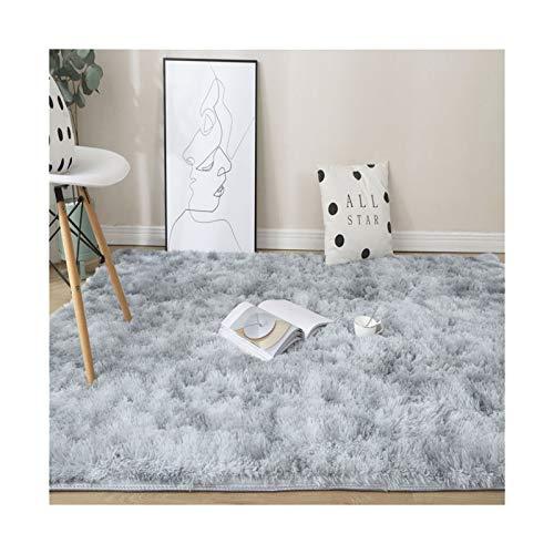 WAZG SYBLD Rainbow Color Carpet Dyed Plush Soft Carpet, Used For Bedroom And Living Room Non-slip Floor Mat Carpet (Color : Light grey, Size : 100x200cm)