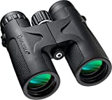10 Best Binocular for Birdings