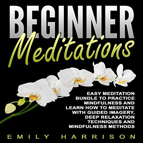 Beginner Meditations cover art
