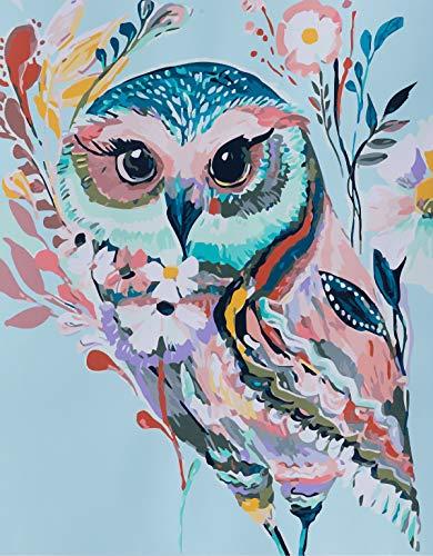 YXQSED Holzrahmen Malen nach Zahlen Neuerscheinungen Neuheiten, Malen nach Zahlen Kits-Der Schmetterlings-Regenbogen-Eule16x20inch