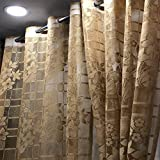 Stuffique Sheer Polyester Floral Transparent Home & Living Room Curtain Set of 1 pcs - 9 Feet, Brown...