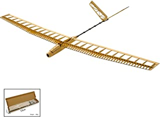 Dancing Wings Hobby Balsa Wood Radio Remote Controlled Electric Powered F14 Glider Uzi Aeroplane Laser Cut Kit Wingspan 1400mm Un-Assembled for Adults;Balsawood Hand Launch Aircraft to Build (F1401)
