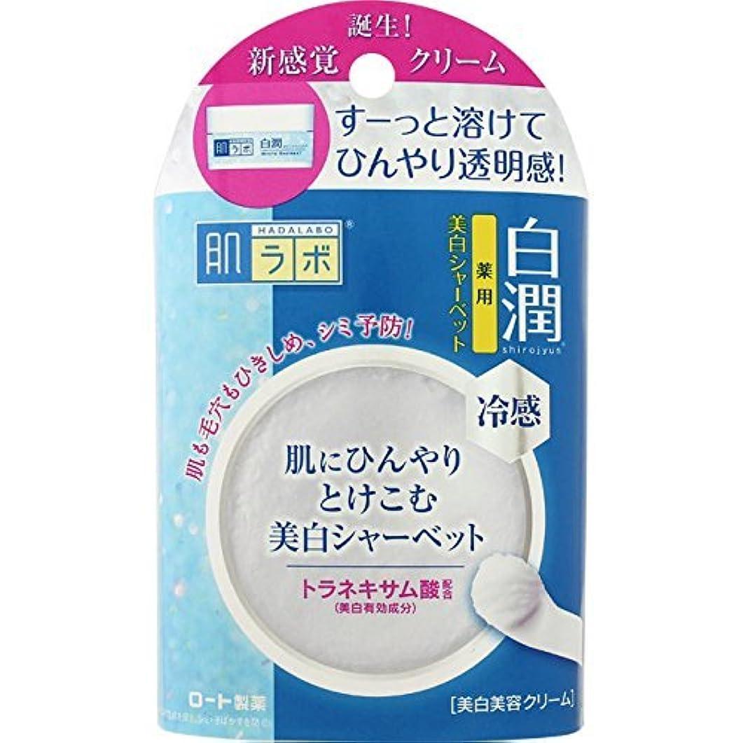 再開迫害する司書肌ラボ 白潤 冷感美白シャーベット30g (医薬部外品)×7