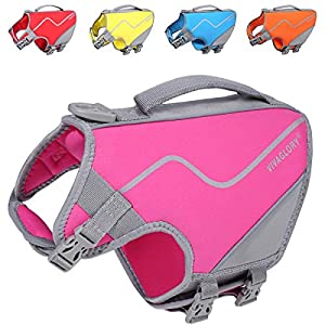 Vivaglory Sports Style Dog Life Jacket, Skin-Friendly Neoprene Life Vest for Small Dogs with Superior Buoyancy & Rescue Handle, Pink S