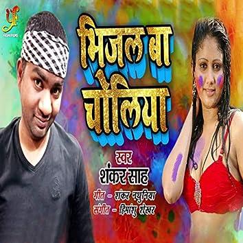 Bhijal Ba Choliya - Single