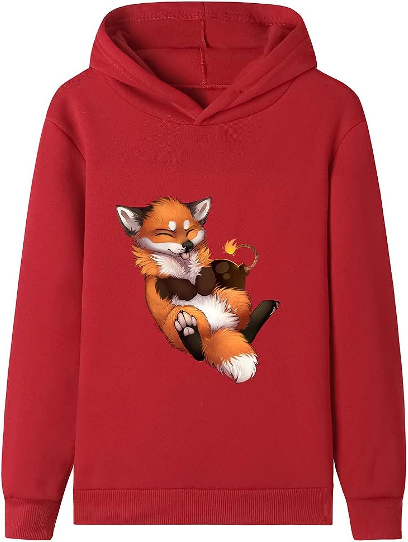 QYMENGYI Hoodies For Boys Fleece Pullover Toddler Lightweight Long Sleeve Sweatshirt Funny Kids Tops