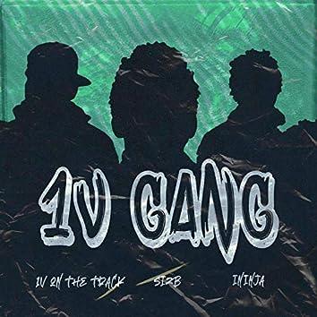 1v Gang