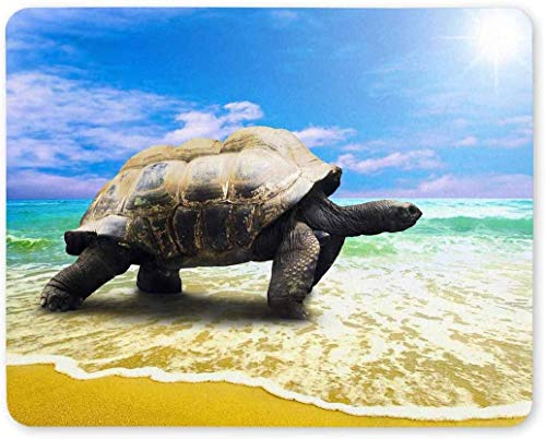Big Sea Turtle on Tropical Oceans Beach Rectangle Non-Slip Rubber Laptop Mousepad Mouse Pads/Mouse Mats Case Cover with Designs for Office Home Woman Man Employee Boss Work