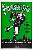 Frankenstein - Colin Clive, Mae Clarke, John Boles, Boris