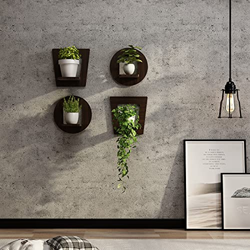 WELLAND 4 Pack Floating Shelves Wall Mounted, Rustic...