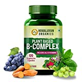 Best B12 Supplements - Himalayan Organics Plant Based B-Complex Supplement with All Review