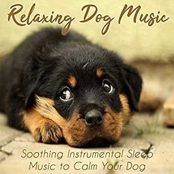 Relaxing Dog Music - Soothing Instrumental Sleep Music to Calm Your Dog
