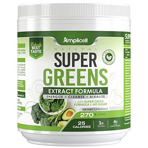 Super Greens - 270g Super Food Green Juice Organic Blend - Fruit and Vegetable Powder Supplement w/ Probiotics - Non-GMO Organic Plant Food Green Drink Mix - Premium Superfood Veggie Juice Cleanse