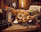 Komking DIY Oil Painting Paint by Numbers for Adults Beginner, Paint by Number Kit Painting on Canvas Without Frame 16x20inch - Sleeping Cat Pattern