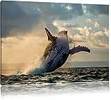 Buckelwale Kanada Bild auf Leinwand, XXL riesige Bilder