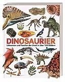Dinosaurier: Lebewesen und Fossilien der Urzeit in über 1000 Bildern (Unsere Welt in 1000 Bildern)