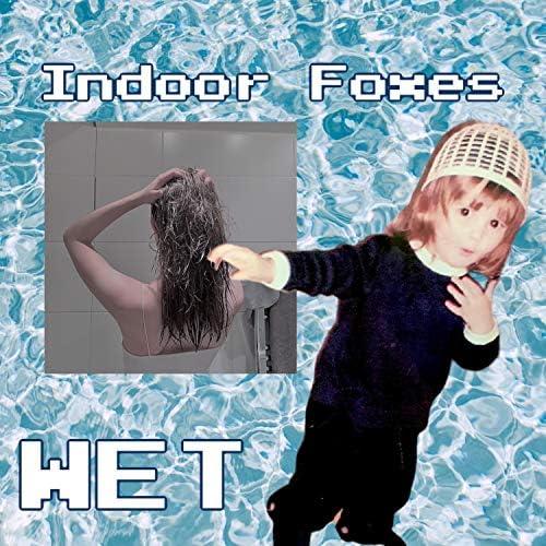 Indoor Foxes