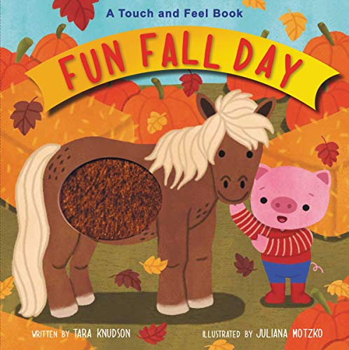 Fun Fall Day: A Touch and Feel Bookの詳細を見る