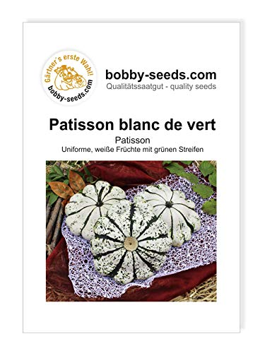 Patisson vert-blanc Kürbissamen von Bobby-Seeds, Portion