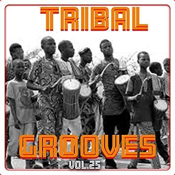 Tribal Grooves, Vol. 25