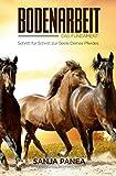 Bodenarbeit - Das Fundament: Schritt für Schritt zur Seele Deines Pferdes