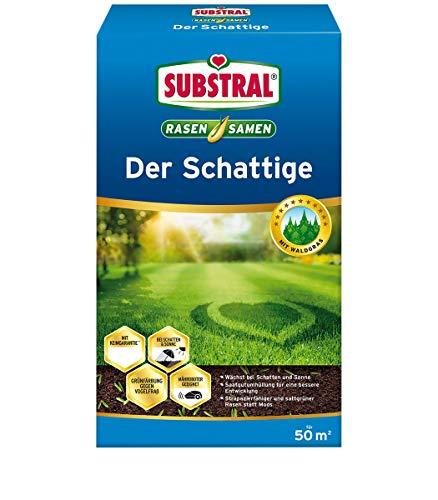 Substral Rasensamen Der Schattige, Schattenrasen, Premium Rasensamen für schattige Stellen, 1 kg für 50 m²