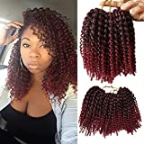 Flyteng Marlybob Kinky Curl Crochet Braids Hair Extensions 6 packs/lot Synthetic Crochet Braiding Hair For Women Tbug