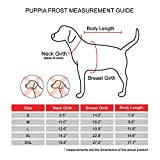 Puppia Authentic Frost Hundemantel